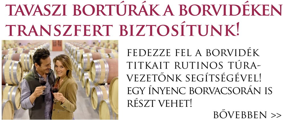 Bortura_villanyi_borvidek_keskeny2_resize