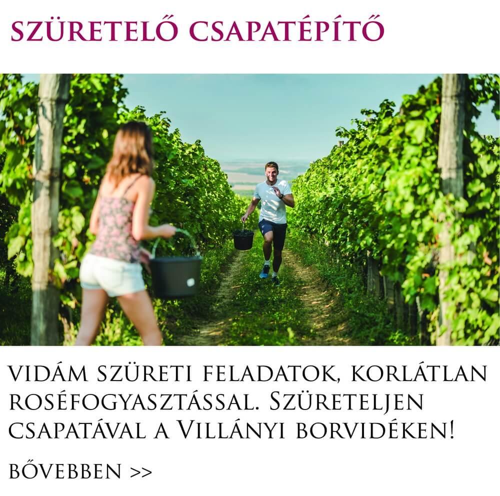 szuret_villany_csapatepito_program_