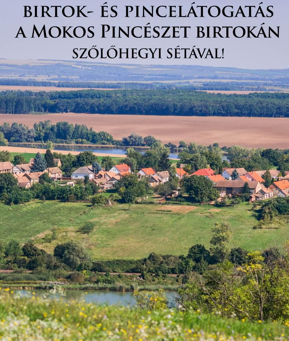 birtok_es_pince_seta_mokos_palkonya