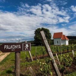 palkonya_dulofutas_2
