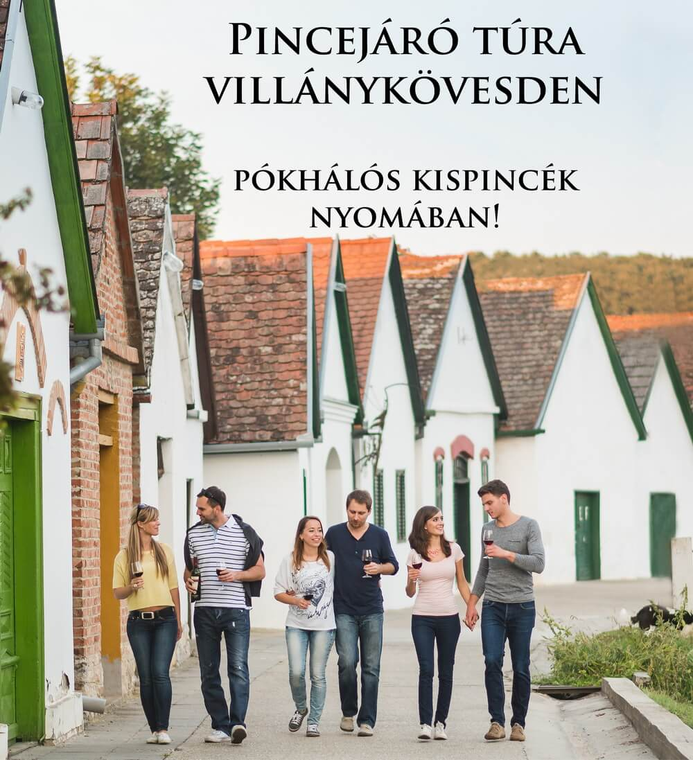 pincetura_villany_kovesd_bortura_program_3