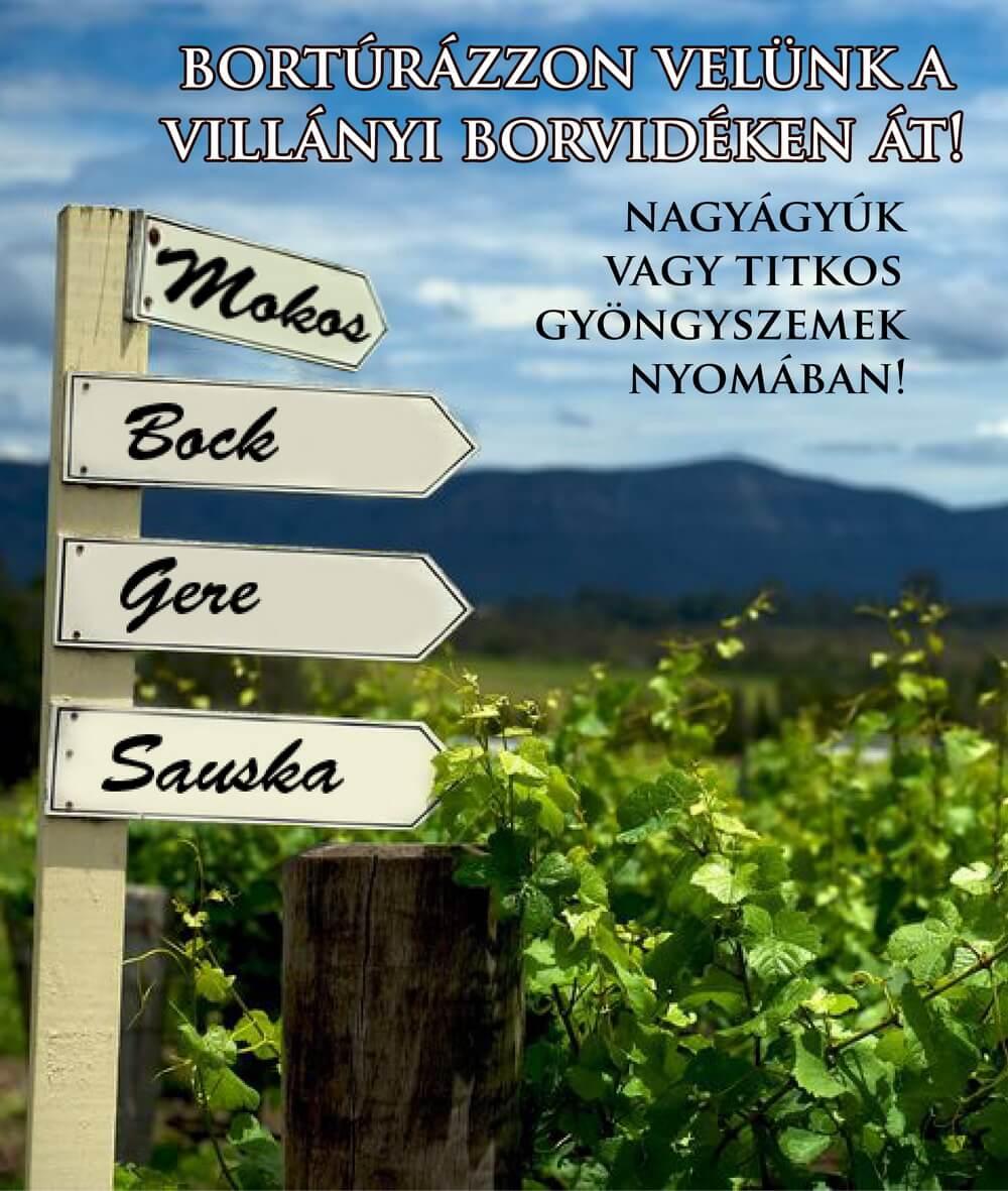 szervezett_bortura_villany_borvidek