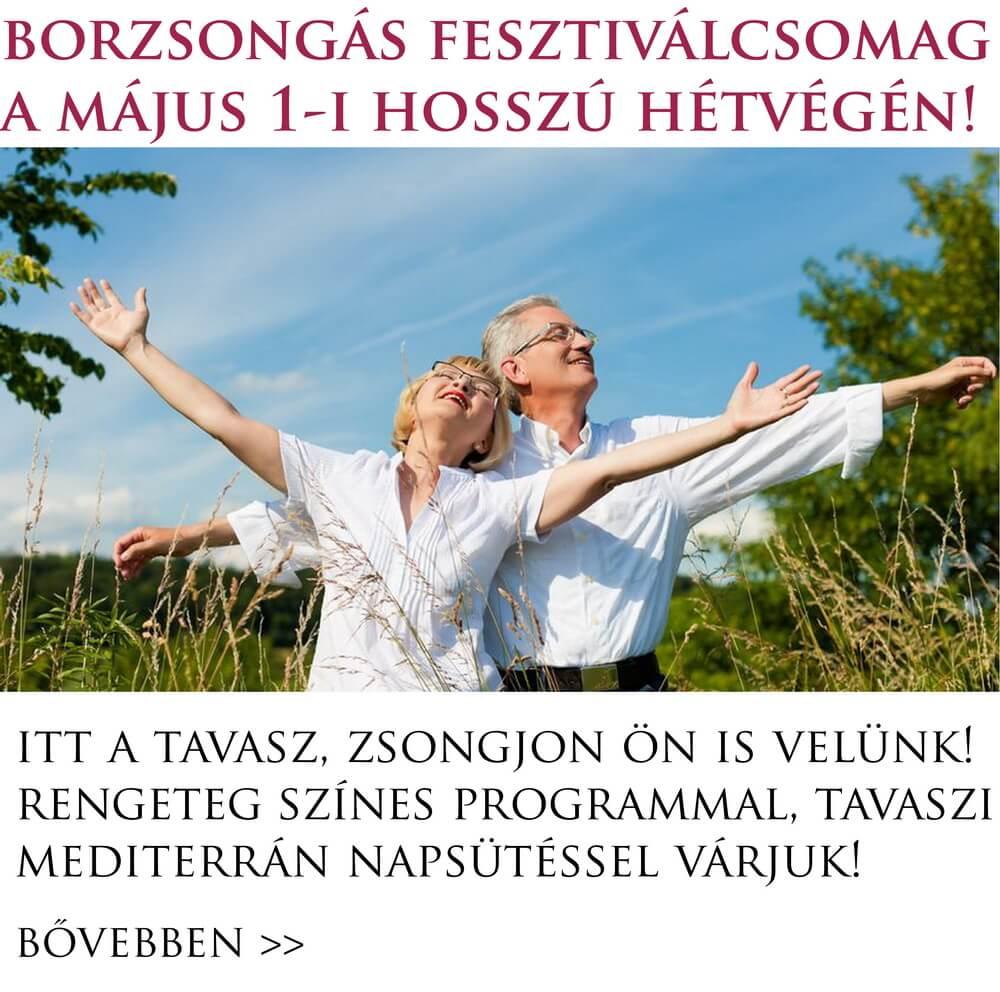 borzsongas_fesztival_hosszu_hetvege_majus_1_villany